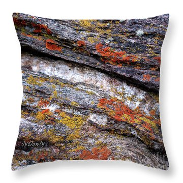 Stone And Lichen Throw Pillow