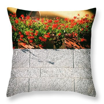 Throw Pillow featuring the photograph Stone Bench With Flowers by Silvia Ganora