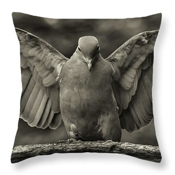 Stone Dove Landing Throw Pillow