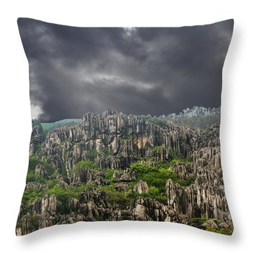 Stone Forest 3 Throw Pillow