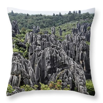 Stone Forest Throw Pillow by Wade Aiken