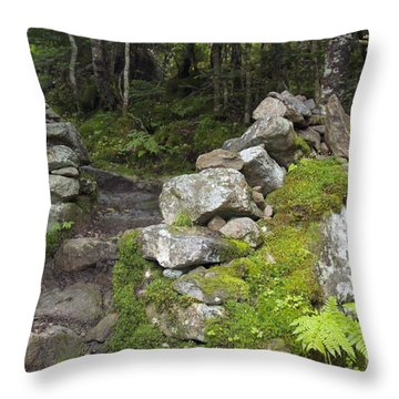 Stone Gate - Edmands Path - White Mountains New Hampshire  Throw Pillow by Erin Paul Donovan