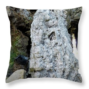 Throw Pillow featuring the photograph Stone Over Time by Francesca Mackenney