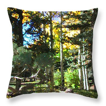 Stone Park Trails Throw Pillow