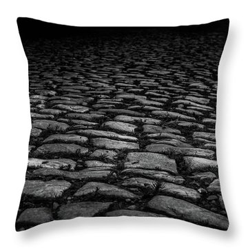 Stone Path Throw Pillow