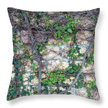 Throw Pillow featuring the photograph Stone Wall Covered With Vines by Yali Shi