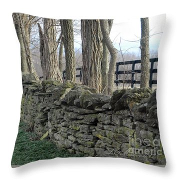 Stone Wall Throw Pillow by Linda Mesibov