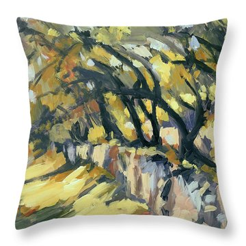 Stone Wall Olive Grove Terrace Throw Pillow