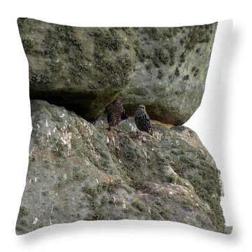 Throw Pillow featuring the photograph Stonehenge Birds by Francesca Mackenney