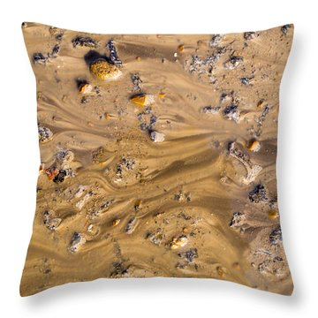 Stones In A Mud Water Wash Throw Pillow