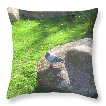 Stones In The Gulbenkian Foundation Park In Lisbon Throw Pillow