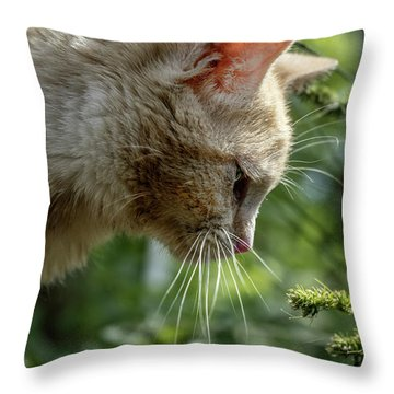 Stop And Smell The Flowers 9433a Throw Pillow