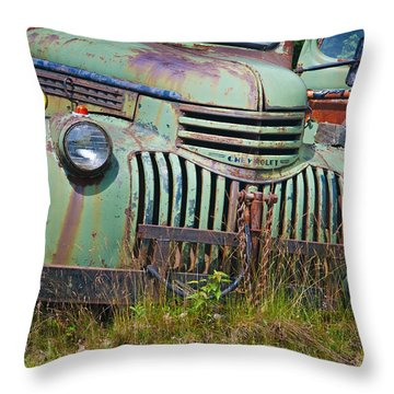 Stopped For Good Throw Pillow
