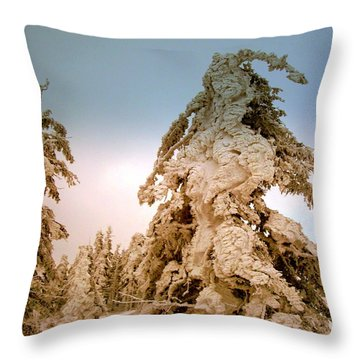 Stopped Wind Throw Pillow