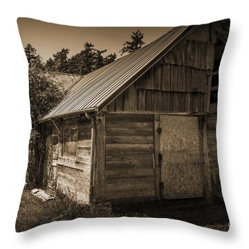 Storage Shed In Sepia Throw Pillow