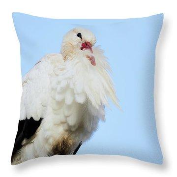 Throw Pillow featuring the photograph Storck Closeup by Nick Biemans