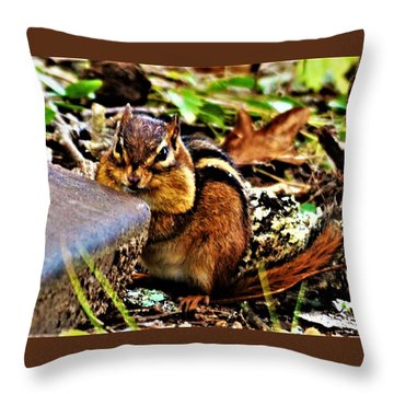 Storing For Winter Throw Pillow