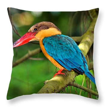 Stork-billed Kingfisher Throw Pillow by Louise Heusinkveld