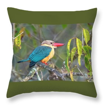 Stork-billed Kingfisher Throw Pillow
