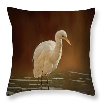 Throw Pillow featuring the photograph Stork On A Rock by Elaine Teague