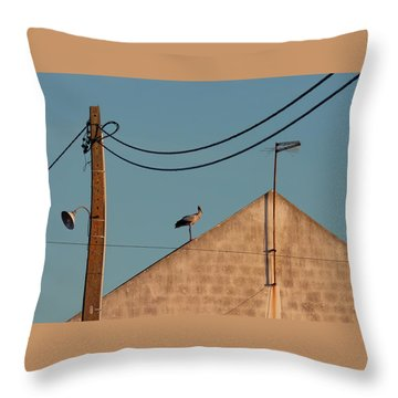 Stork On A Roof Throw Pillow by Menega Sabidussi