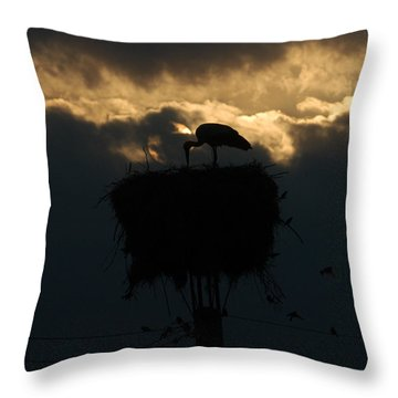 Stork With Evening Sun Light  Throw Pillow