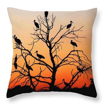 Storks In The Evening Sun Light Throw Pillow