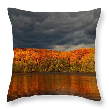 Storm  2 Throw Pillow