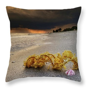 Throw Pillow featuring the photograph Storm And Sea Shell On Sanibel by Greg Mimbs