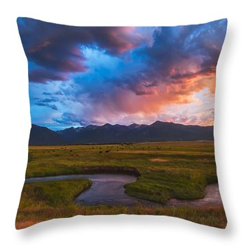 Storm At Prairie Creek Throw Pillow