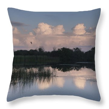 Storm At Sunrise Over The Wetlands Throw Pillow