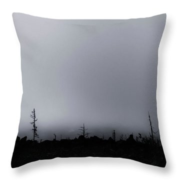 Throw Pillow featuring the photograph Storm by Cat Connor