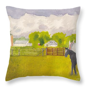 Storm Clouds Mare And Colt At Sunrise Throw Pillow