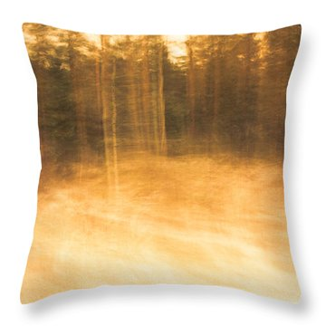 Storm In The Forest Throw Pillow