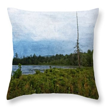 Storm On Raquette Lake Throw Pillow