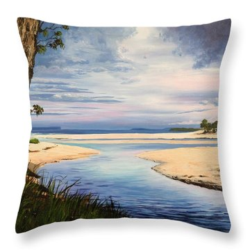 Storm Over Moona Moona Creek Throw Pillow