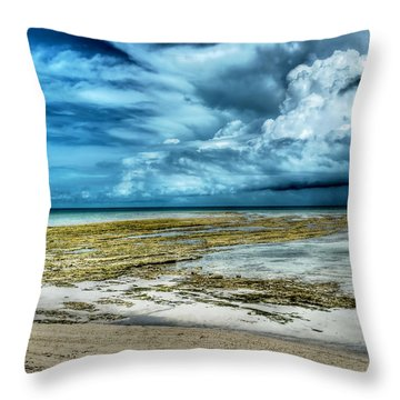 Storm Over Yamacraw Throw Pillow