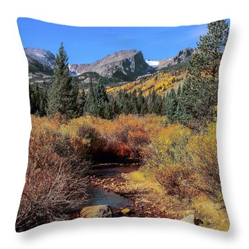Storm Pass Trail Throw Pillow by Perspective Imagery