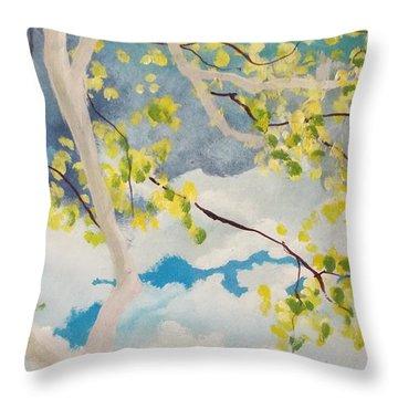 Storm Px 6 Throw Pillow
