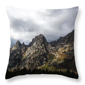 Throw Pillow featuring the photograph Storming Light by Colleen Coccia