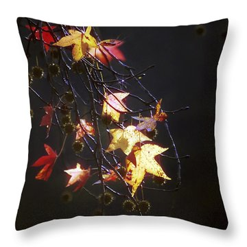 Storm's Bliss Throw Pillow