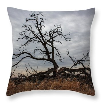 Throw Pillow featuring the photograph Storms Make Trees Take Deeper Roots  by Viviana  Nadowski