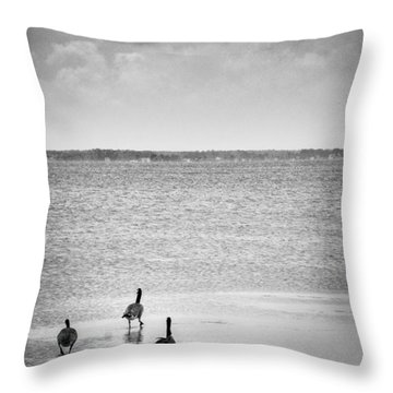 Canada Geese - Currituck Sound Throw Pillow