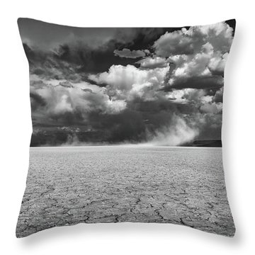 Stormy Alvord Throw Pillow