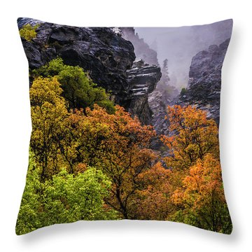 Stormy American Fork Canyon - Wasatch - Utah Throw Pillow by Gary Whitton