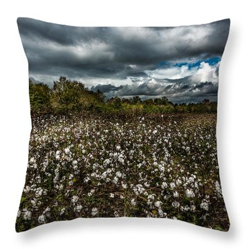 Stormy Cotton Field Throw Pillow