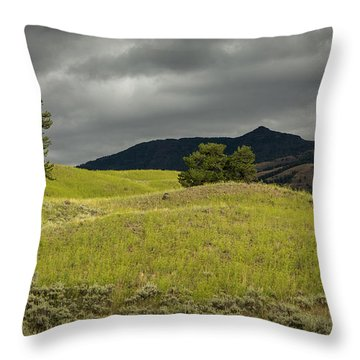 Stormy Fields Of Yellow Throw Pillow