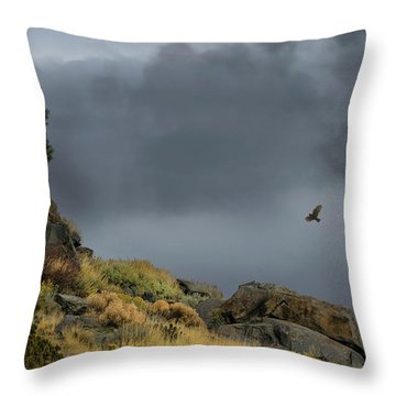 Throw Pillow featuring the photograph Stormy Flight by Frank Wilson