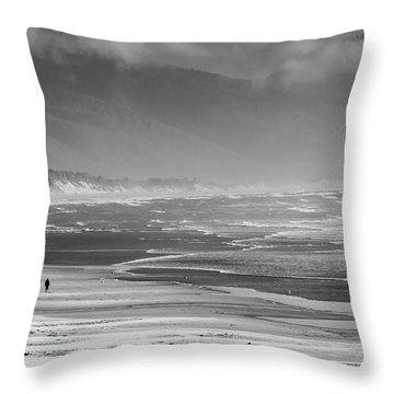 Stormy Oceanside Oregon Throw Pillow