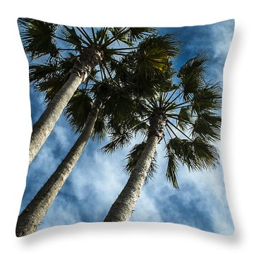 Stormy Palms 1 Throw Pillow